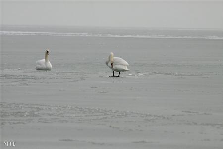 Életveszélyes a Balaton jege!