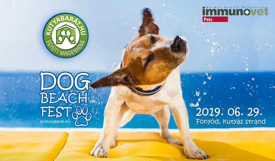 Dog Beach Fest 2019