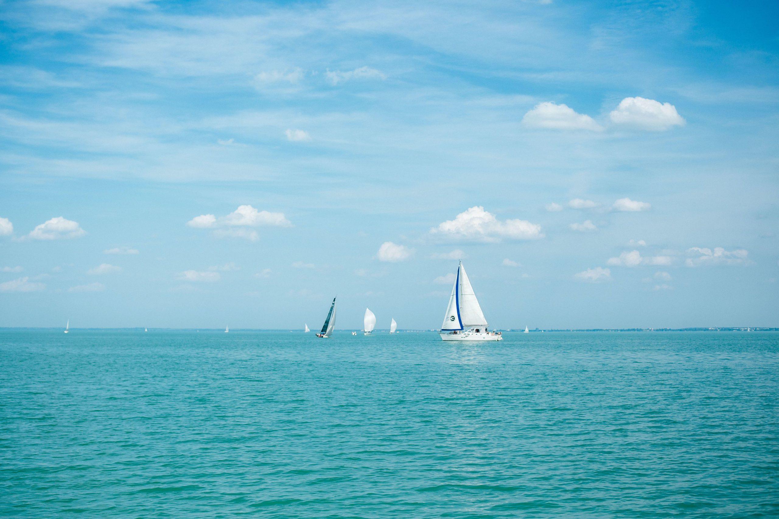 Két balatoni település partjainál mértek magas algaszintet